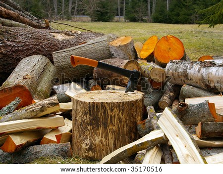 axe and pile of chopped firewood