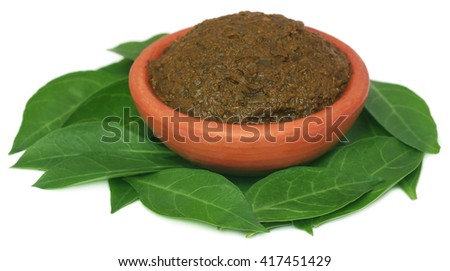 Ayurvedic henna leaves with paste in a pottery - stock photo