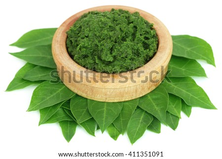 Ayurvedic henna leaves with paste over white background - stock photo
