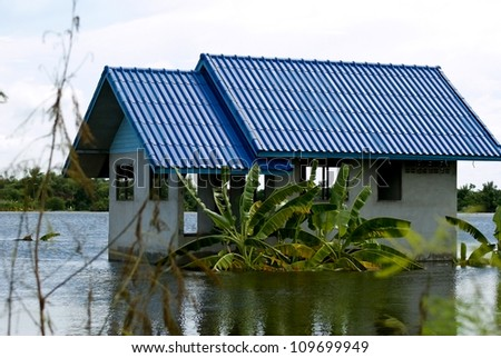 AYUTTHAYA, THAILAND - SEPTEMBER 12: Heavy flooding from monsoon rain in Ayutthaya and north Thailand arriving in Ayutthaya suburbs on September 12, 2011 in Ayutthaya, Thailand. - stock photo