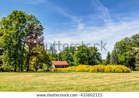 Azalea and Rhododendron Park Kromlau in the Upper Lusatia, Germany - stock photo
