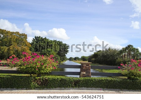 Azalea trees with canal in background