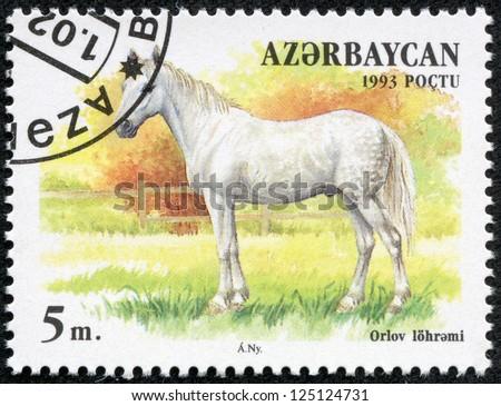 AZERBAIJAN - CIRCA 1993: A stamp printed in Azerbaijan shows a white horse standing in a pasture, circa 1993. - stock photo