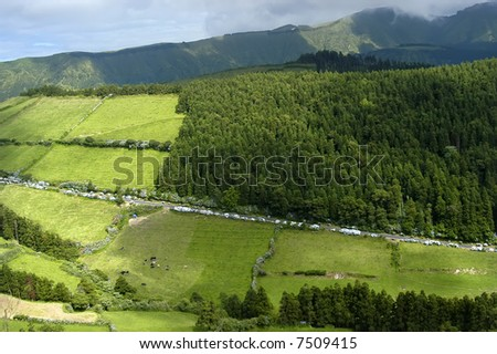 azores green fields at sao miguel island