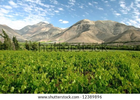 Azure cloudscape over the vineyard surrounded with hills. Valle del Elqui. Chile - stock photo
