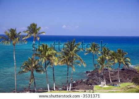 Azure Hawaiian Snorkeling Beach on Kona Island