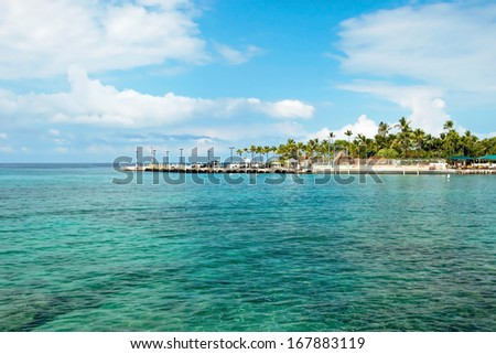 Azure ocean and palm trees on Hawaii - stock photo