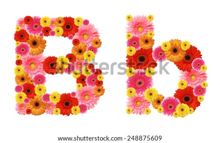 b, flower alphabet - stock photo