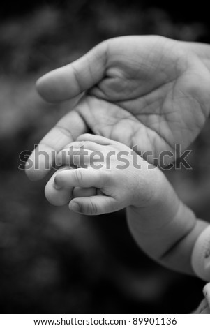b&w photo adult holding a baby hand - stock photo