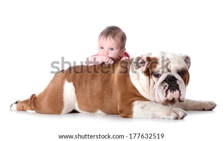 baby and dog - 3 month old baby with 4 year old english bulldog isolated on white background - stock photo