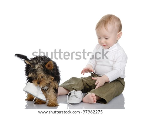 baby and puppy that got a hold of the kids shoes. isolated on white background - stock photo