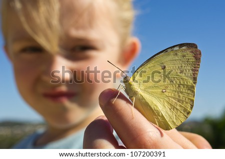 baby arm butterfly - stock photo