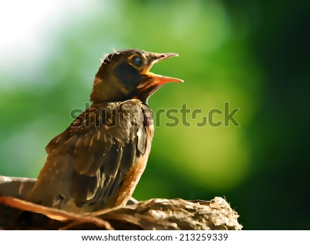 Baby bird in a nest illustration - stock photo