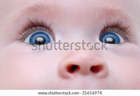 baby blue eyes with long eyelash close-up - stock photo