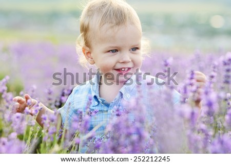 baby boy in the lavender summer field - stock photo