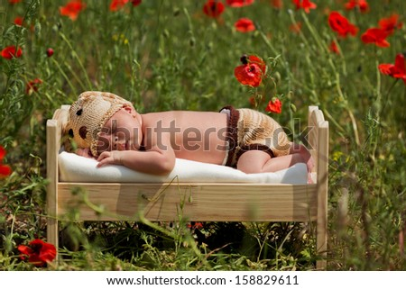 Baby boy, sleeping in a little bed in a poppy field - stock photo