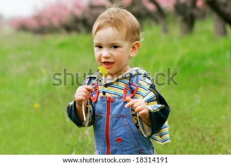 baby boy with dandelion portrait - stock photo