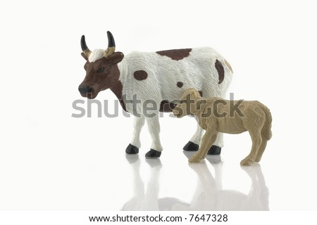 Baby calf and cow toy  isolated on white - stock photo