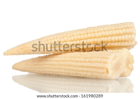 Baby corn on a white reflective background