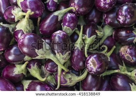 Baby eggplant at the market  - stock photo