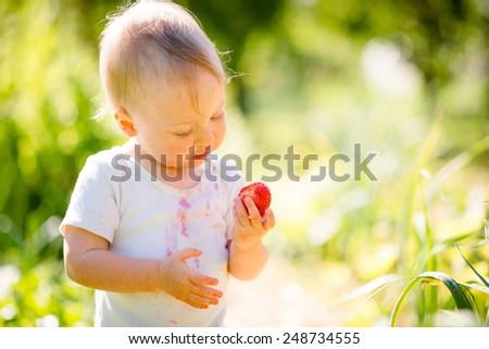 Baby examining strawberry, outdoor in garden on sunny day - stock photo