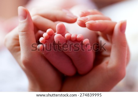 Baby feet cupped into mothers hands - stock photo