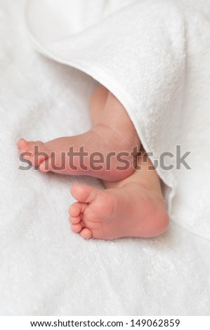 Baby feet in a white towel (6 week old baby) - stock photo