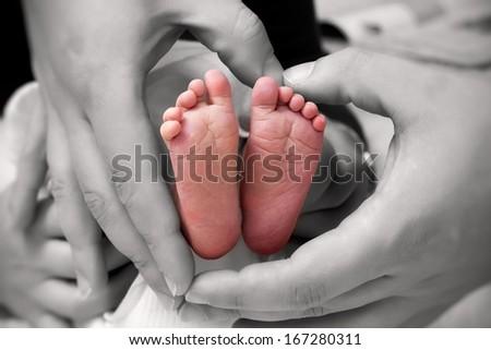 Baby feet - newborn - stock photo