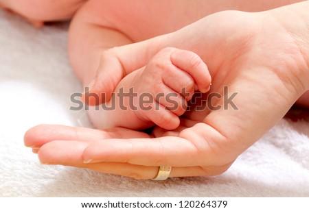 Baby fist. Shallow DOF - stock photo