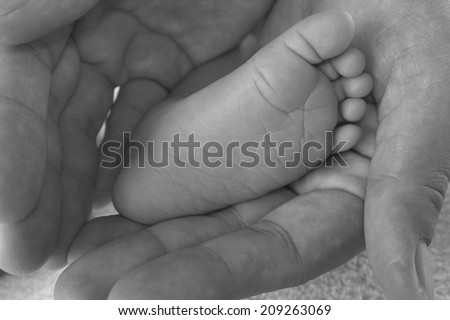 baby foot in hand mom, black and white - stock photo