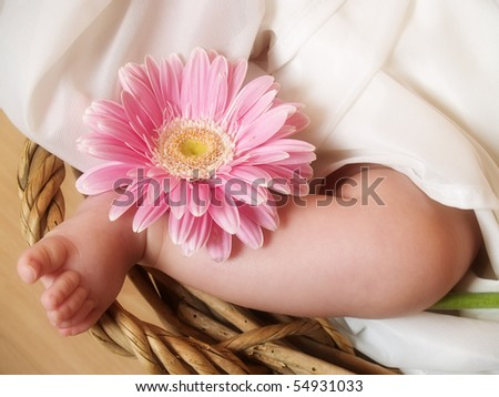 Baby foot with flower - stock photo