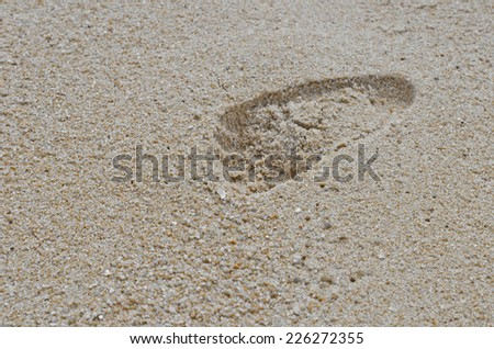 Baby footprint in sand on beach - stock photo