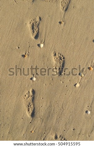 Baby footprints in the sand at beach. Summer background