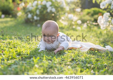 Baby girl crawling on the grass. Selective focus on her eyes. Photo toned with yellow sunset light
