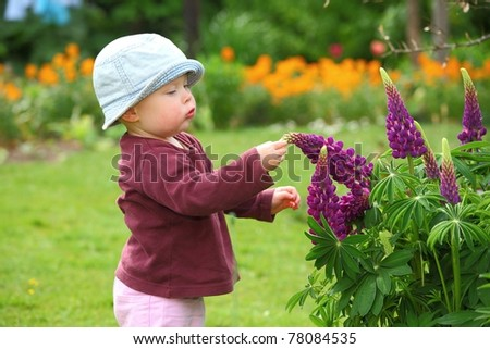 Baby girl explores some flowers in the garden - stock photo