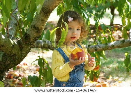 Baby girl is eating a peach on the farm - stock photo