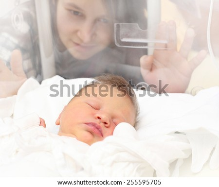 Baby girl sleeping in a incubator. Her mother looking at. - stock photo
