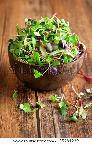 Baby greens in a bowl - stock photo