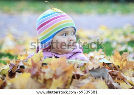 Baby in autumn leaves - stock photo