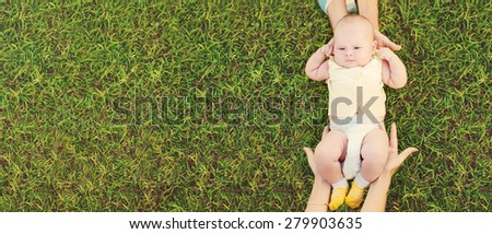 Baby in parents care hands  on green grass background in park - stock photo