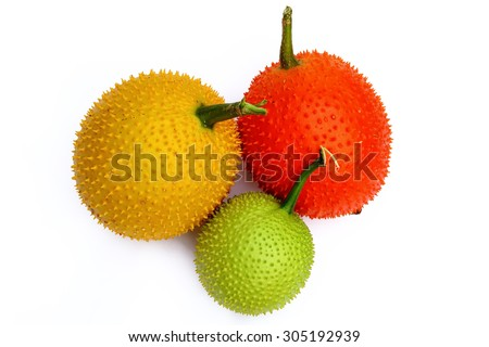 Baby Jackfruit, A herbal treatment - stock photo