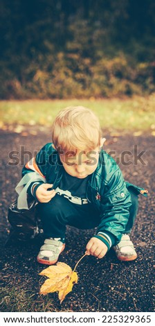 baby kid is playing outside in autumn. He has found a leaf. There is space for your own text. - stock photo