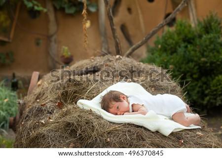 Young Newborn Baby Sleeping On Flower Stock Photo