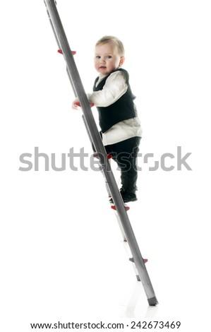 Baby on career ladder upwards - stock photo