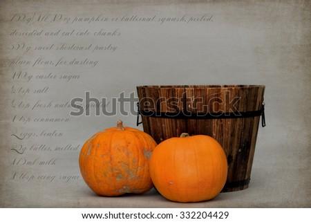 baby/pet digital Halloween backdrop - stock photo