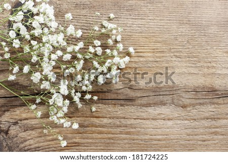 Baby's breath (gypsophilia paniculata) on wooden background - stock photo