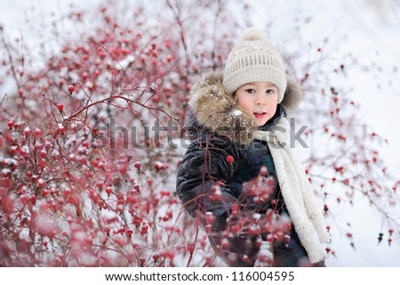 baby sitting in the snow in winter next to a beautiful red tree