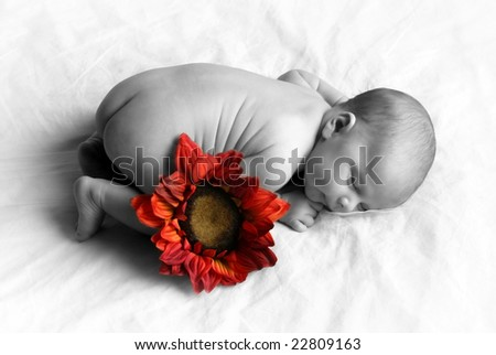 Baby sleeping with a colored flower - stock photo