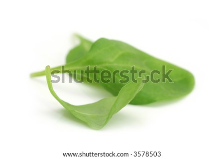 Baby spinach leaves ~ macro on white.  Shallow depth of field.