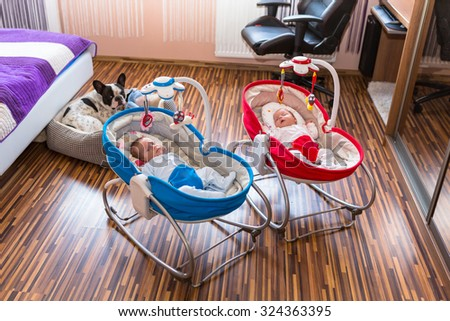 Baby twins lying down in cradles with dog watching them - stock photo